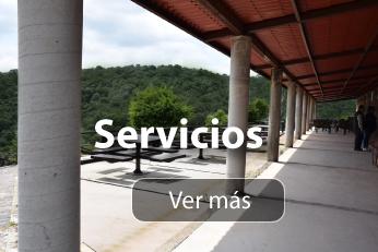servicios cgv