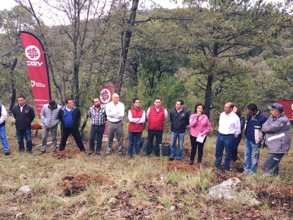 ESR- Reforestación Amealco