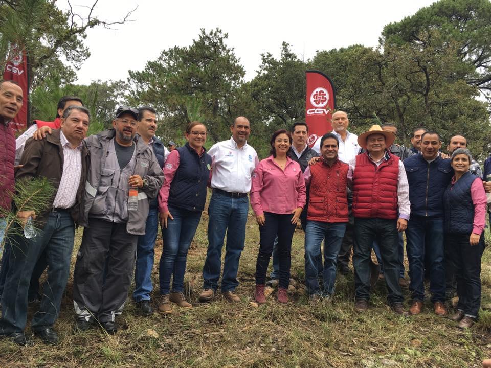 Reforestacion CGV