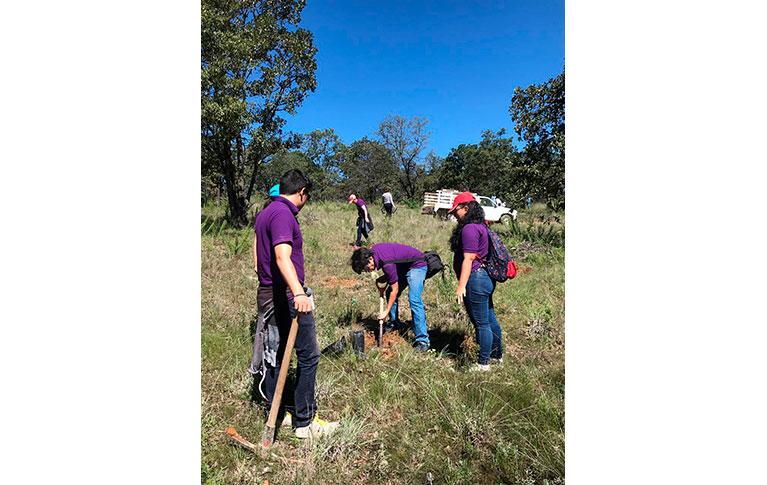 Caja CGV ayudando a la reforestación del Parque Natural La Beata